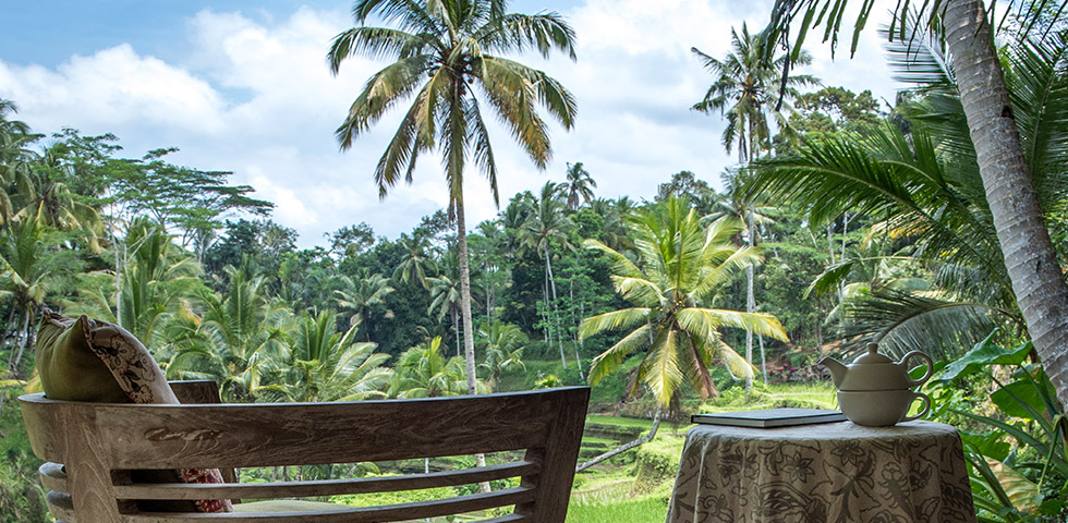 Panchakarma resort with ricefields surrounding